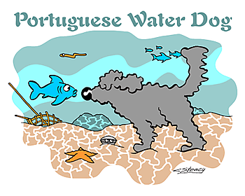 Port_water_dog