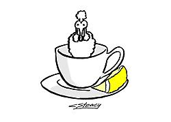 Poodle_06_teacup