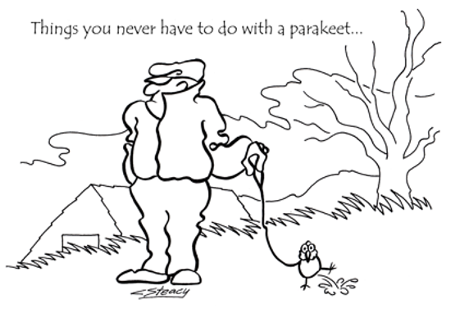 Parakeet_bw