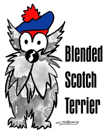 Blended_Scotch_Terrier